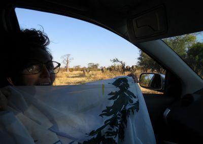 Zimbabwe (Victoria Falls) Ali Hendrick 2016 (Copy)